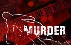 murder_350_111412071506