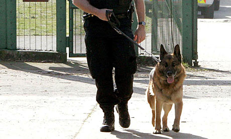 police dog handler remanded for cocaine marijuana