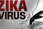 T&T in new plan to combat Zika