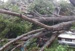 Barbados gives all clear after tropical storm